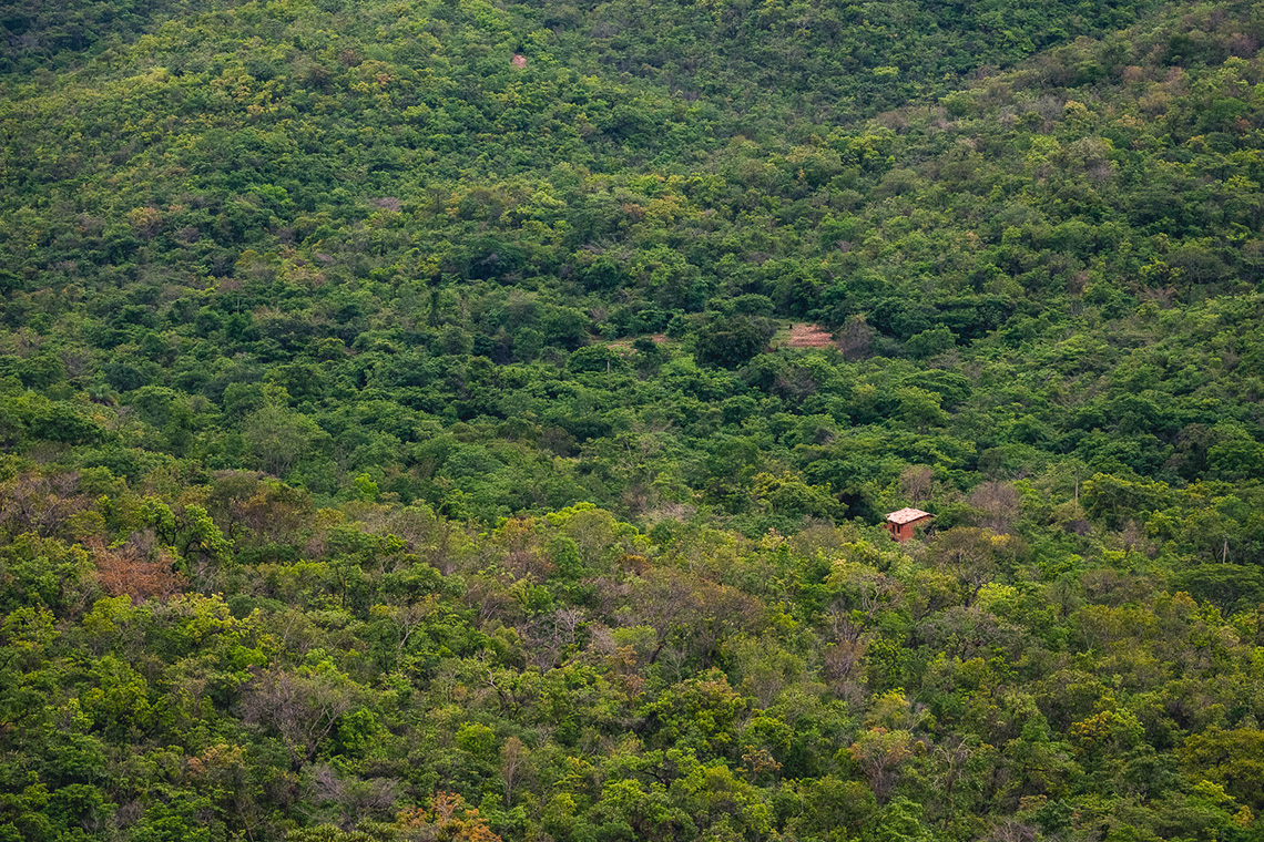 o-levante-das-comunidades-tradicionaisFoto: Gui Gomes