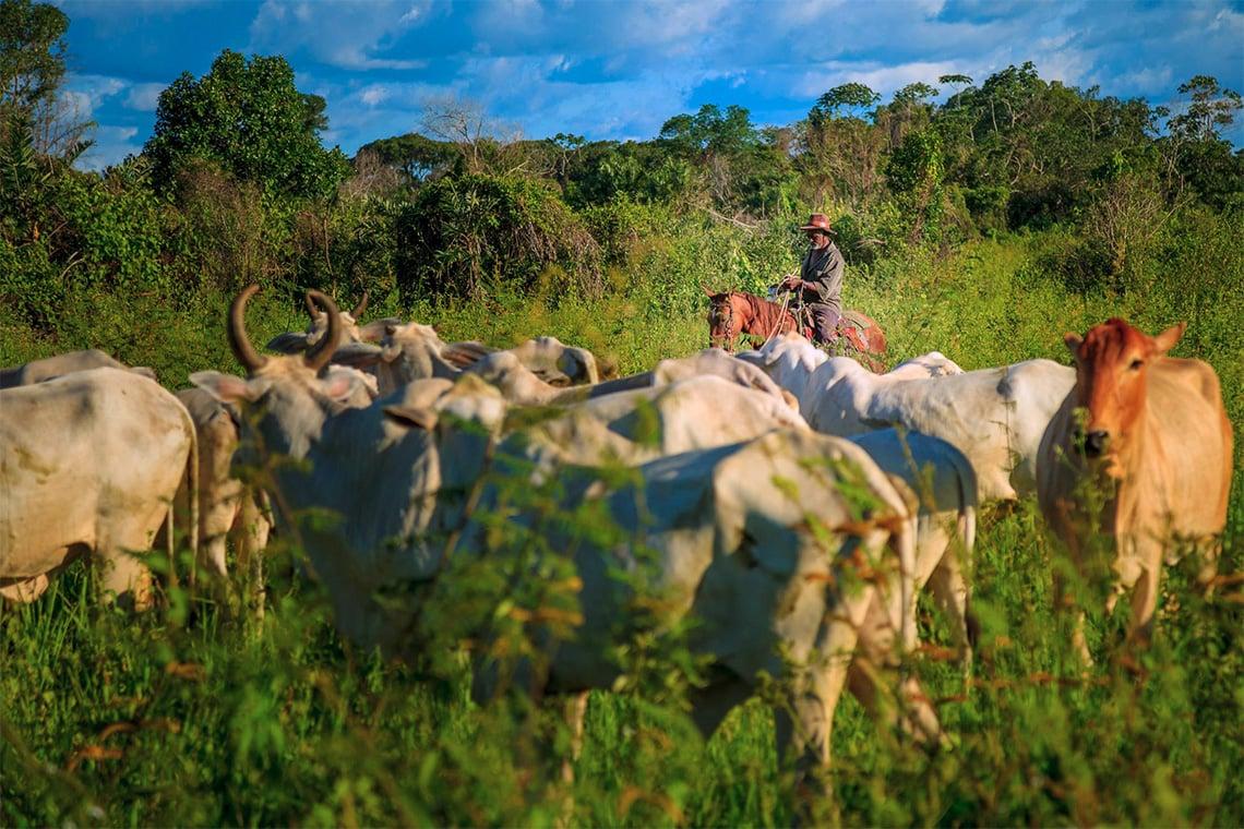 o-levante-das-comunidades-tradicionais