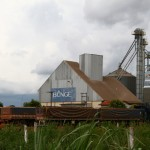 Gigantes como a multinacional Bunge estão por trás da expansão da soja no mato Grosso (Foto: Carolina Motoki)