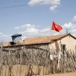 Irrigação é demanda antiga do MST em assentamento sem água