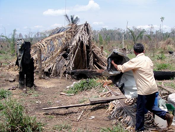 Fazenda Sonho Meu, onde trabalhadores estavam alojados em barraco de palha, em Rondônia. (Foto: MPT)