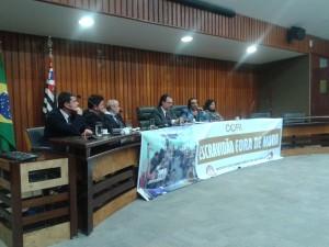 Audiência da Comissão de Direitos Humanos da Alesp (Foto: Guilherme Zocchio)