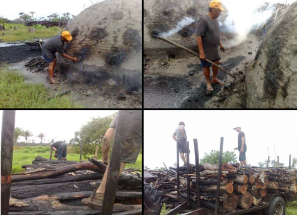 Trabalhadores resgatados produziam carvão sem nenhum equipamento de proteção, em condições degradantes. Fotos: Divulgação/MTE