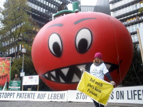 Tomate-monstro, em protesto, representa o desenvolvimento de transgênicos pela Monsanto na Europa. (Foto: Divulgação / no