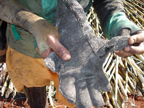 Trabalhador resgatado em usina em 2010 exibe luva rasgada. Foto: Divulgação/MPT