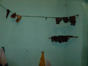 Carne pendurada no varal de alojamento de obra da CSO Engenharia (Foto: SRTE/BA)