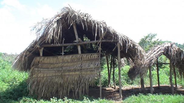 Alojamento de trabalhadores flagrados em condições análogas às de escravos em fazenda da Líder Agropecuária, que tem como sócio o deputado estadual Camilo Figueiredo (PSD-MA) (Foto: SRTE/MA)