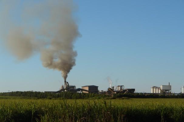Plantação e usina de processamento de cana no Mato Grosso do Sul. Foto: Verena Glass