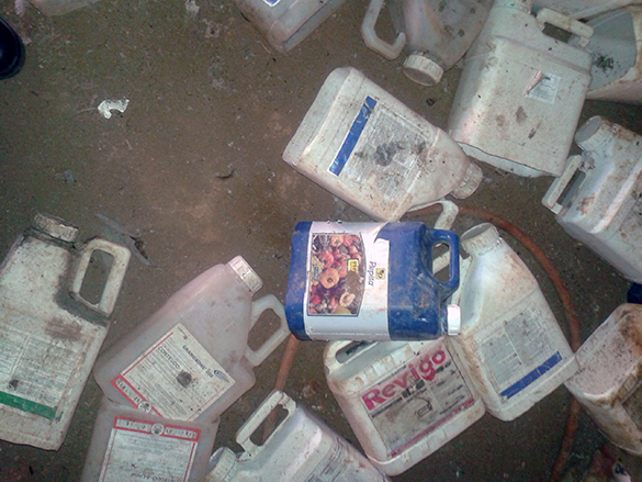 Embalagens de agrotóxicos descartadas em local próximo ao alojamento