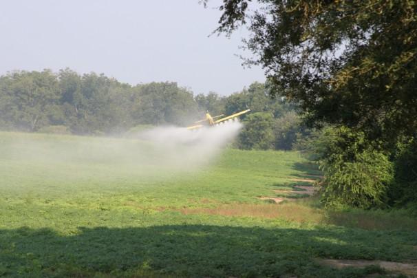 Avião despejando pesticidas em plantação (Foto: Jay Oliver/UGA CAES)