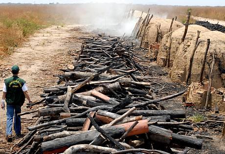Infrações ambientais são comuns na produção de carvão no Brasil. Na foto, registro de operação do Ibama realizada em Riachão das Neves, na Bahia. Foto: Jefferson Rudy/MMA