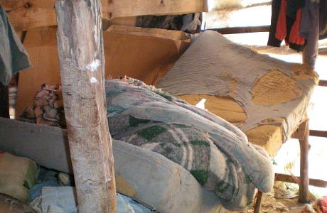 Especial: 10 anos da 'lista suja' do trabalho escravo