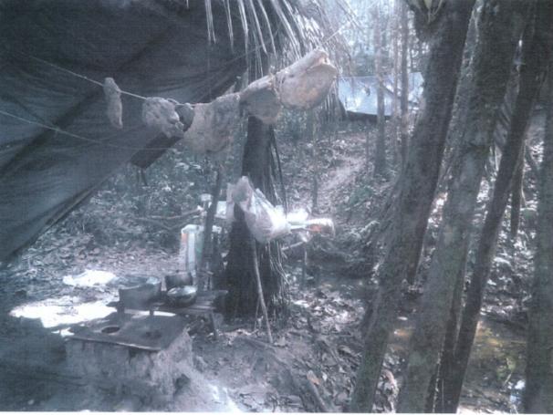 Carne encontrada pela fiscalização em acampamento de trabalhadores da fazenda de João Bertin Filho era armazenada em varais e estava podre, segundo a fiscalização. Foto: Divulgação/MTE