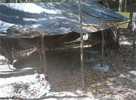 Trabalhadores resgatados viviam em acampamento improvisado no meio da mata. Fotos: Divulgação/MTE