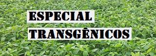 transgenicosespecial