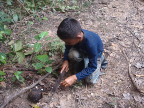 Ex-prefeito de Lábrea é responsabilizado por trabalho escravo infantil