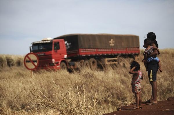 O amargo do Caraguatá: a realidade dos Guarani-Kaiowá no Mato Grosso do Sul