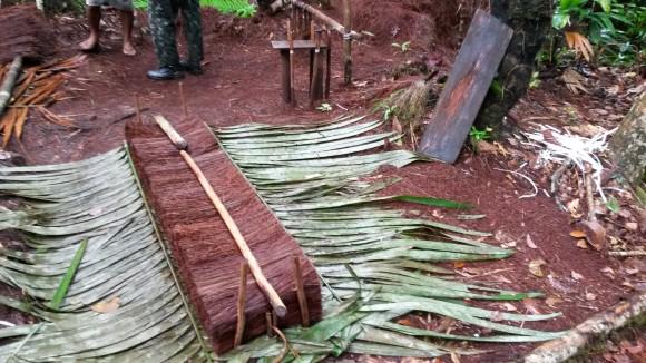 Fiscalização flagra escravidão na extração de piaçava no Amazonas