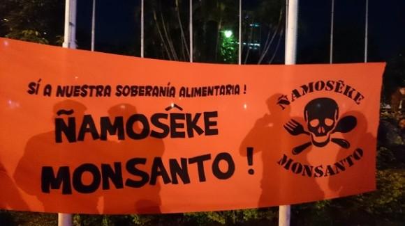 """Em Guarani, faixa de protesto exibe a mensagem """"Fora Monsanto""""."""