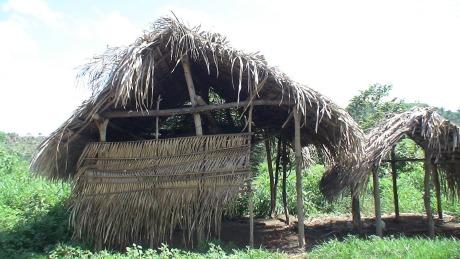 Maranhão nomeia sócio de empresa flagrada com escravos para o governo