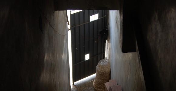 porta cortadaigor