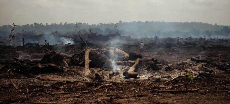 Destruição causada por Belo Monte em ilha habitada por pescadores do rio Xingu, Para(Foto: Repórter Brasil)
