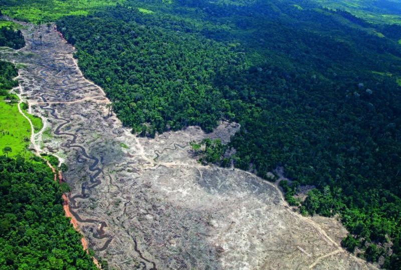 Desmatamento no entorno do Rio Xingu, em Belo Monte. Foto: André Villas Boas/ISA