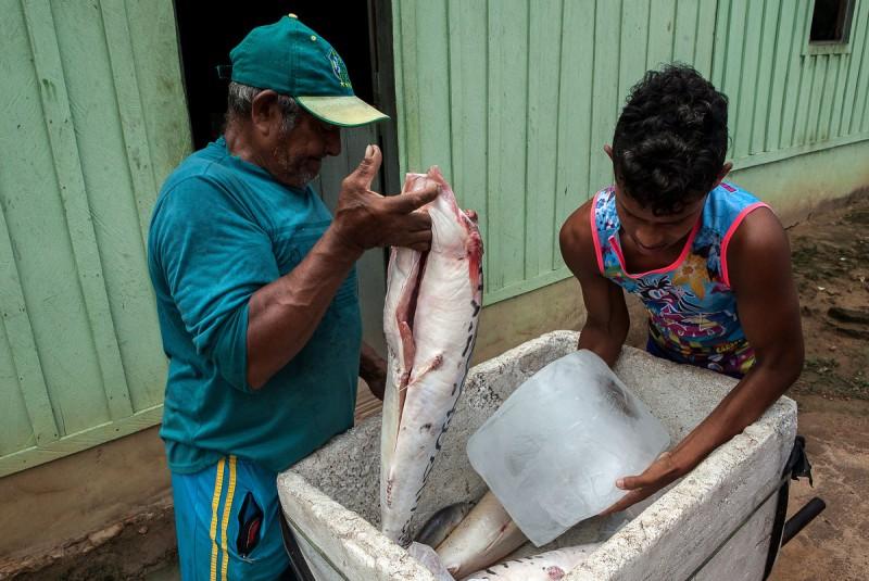 Peixe é a base da alimentação e da economia dos beiradeiros, que fazem comércio precário. Foto: Lilo Clareto/Reporter Brasil
