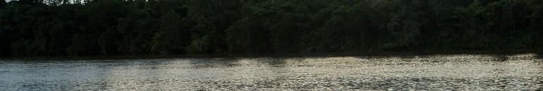 Usinas do Tapajós podem causar contaminação de pescadores e morte de peixes em massa