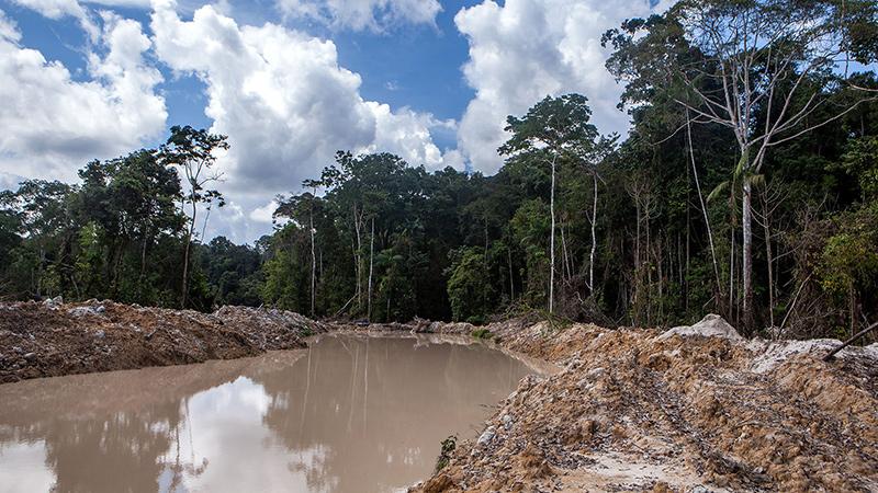 O estrago feito pelo garimpo em meio à floresta amazônica nativa leva décadas para se recuperado