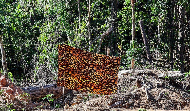Homens e mulheres passavam meses isolados em meio à floresta amazônica