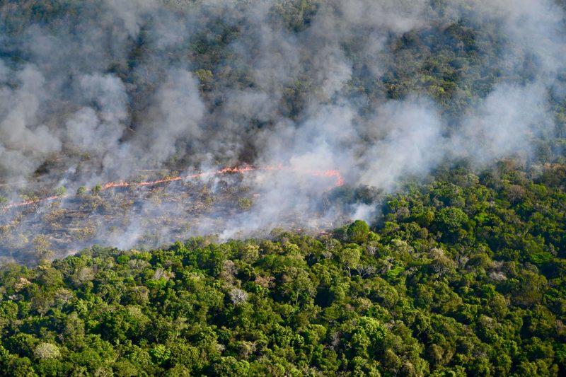 Roubo de terra em área incendiada em Alter do Chão tem lotes de até R$ 100 mil