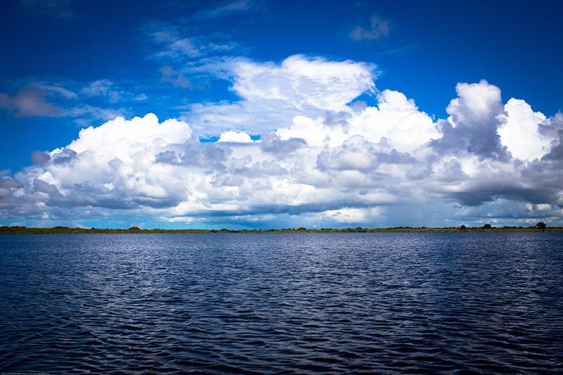 Panorama da Lagoa de Iquipari, em São João da Barra. Foto: Gustavo Lousada/Repórter Brasil