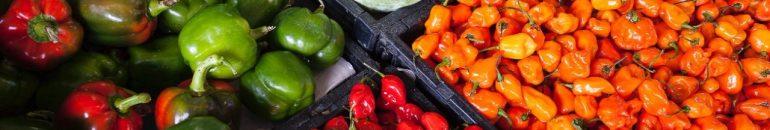 Multinacionais da Europa vendem no Brasil toneladas de agrotóxicos 'altamente perigosos' proibidos em seus países