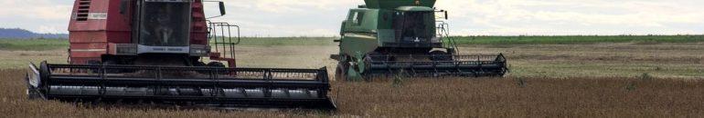 Unicamp suspende pesquisa que poderia liberar agrotóxico letal