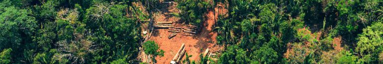 Degradation advances in Mato Grosso and causes zero illegal deforestation target to fail