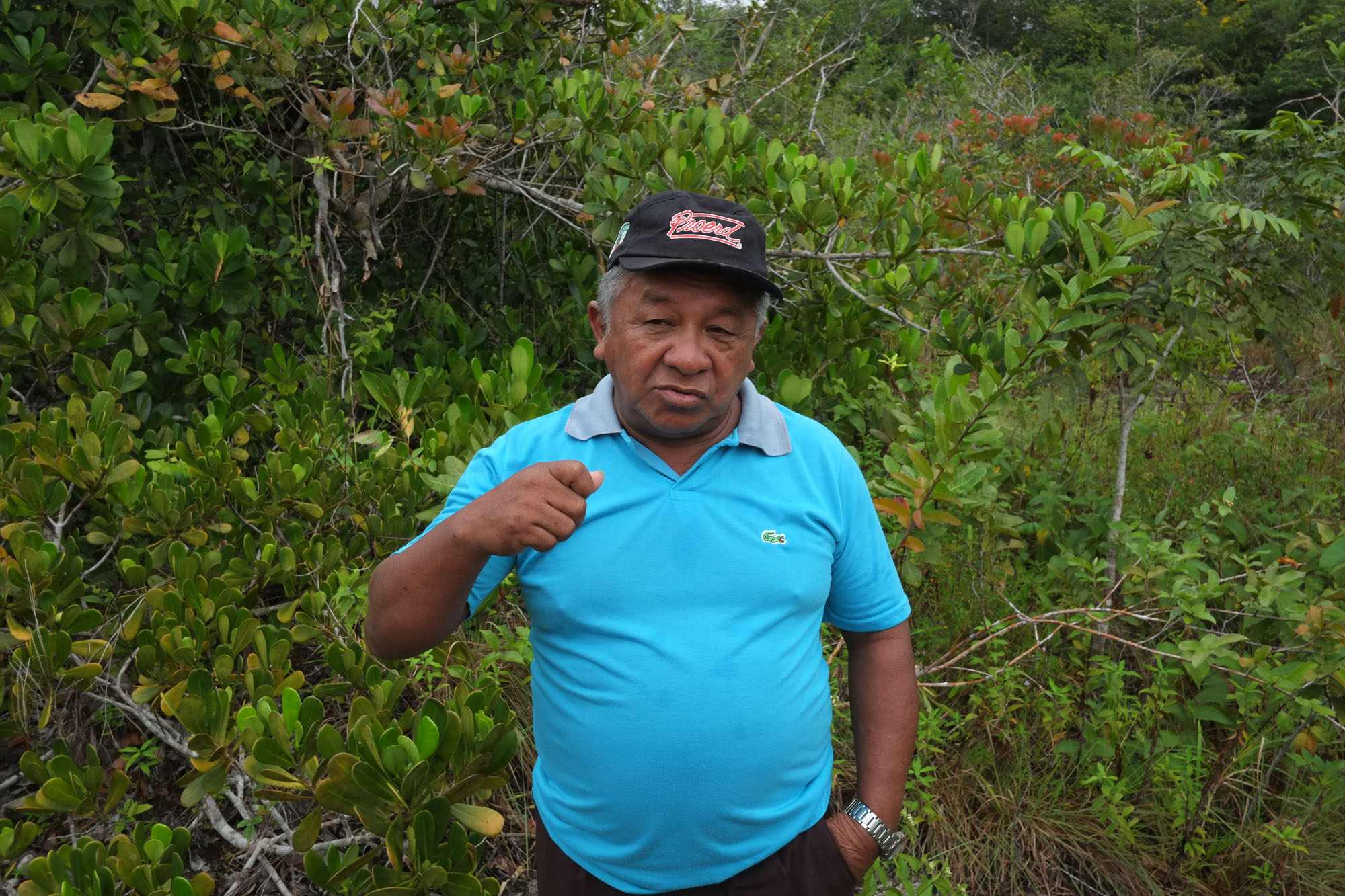 Amado Menezes stands in a forested area wearing a blue Lacoste polo shirt and a baseball cap.