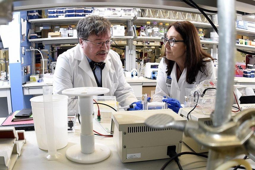 Os cientistas Peter Hotez e Maria Elena Bottazzi